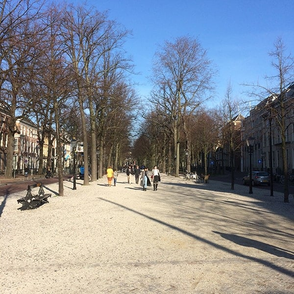 Een rondwandeling door koninklijk Den Haag begint op de Lange Voorhout
