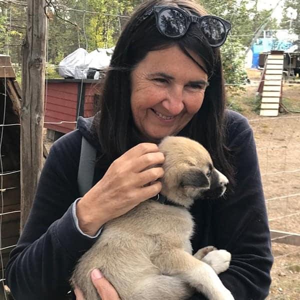 Langs de E45 kun je naar een huskyfarm om met puppies te knuffelen.