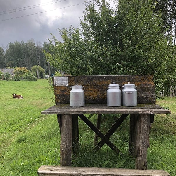 Melkbussen staan klaar op het platteland van Letland