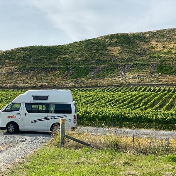 Eindeloze wijnranken in de Wairua Valley tijdens onze camperreis door Nieuw Zeeland