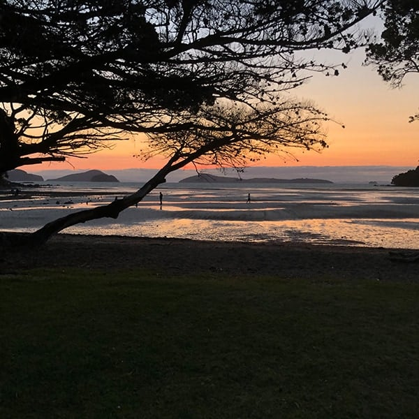 De zondsondergang bij Shelly Beach op Coromandel Peninsula