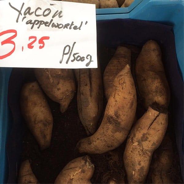 Dit yacon recept is een makkelijke yacon ovenschotel. Yacons zijn af en toe te koop op groentemarkten.