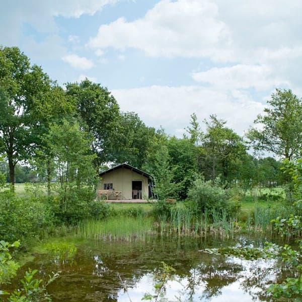 Je kunt een safaritent huren op de Veluwe bij Minicamping Uylkenshof in Emst