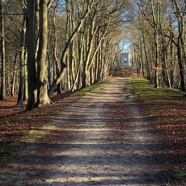 Leyduin is één van de mooiste en rustigste plekken om te wandelen in de omgeving van Haarlem