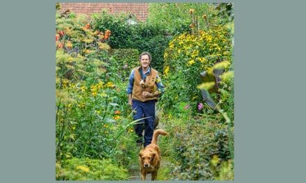 Hoe een tuinprogramma op TV mensen door de lockdown sleept